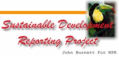 Sustainable Development Reporting Project Turtle Eggs